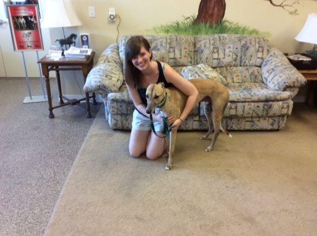 Farel with his new mom, Holly.  Congratulations to this new #fureverfamily! #adoptaretiredracer #gpi #greyhound #greyhoundpetsinc #greyhoundsmakegreatpets