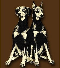 Hand Me Down Dobes - Doberman Rescue in Ohio and surrounding areas  http://hmdd.org/