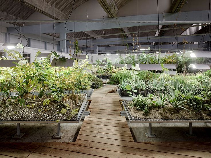 Diaspora Garden by atelier le balto