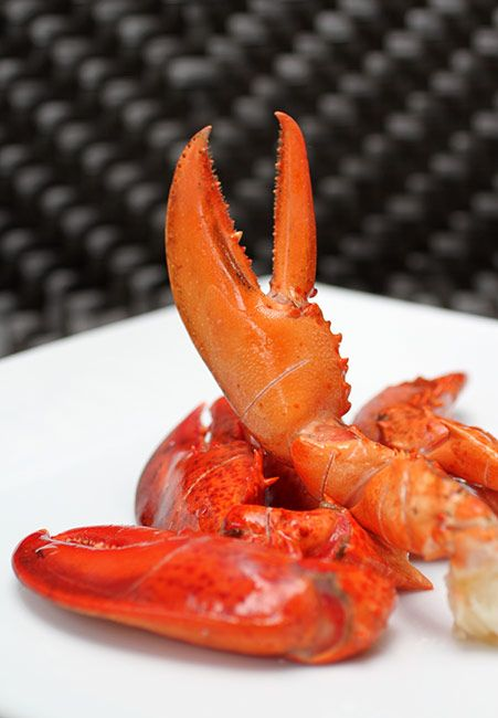 #festivaldemuelas #crab #lafragata #muelasdecangrejo