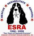 Rescue a Springer, or donate to help! Your local No-Kill Shelter is also another great donation to make!!