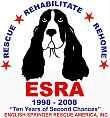 English Springer Rescue America