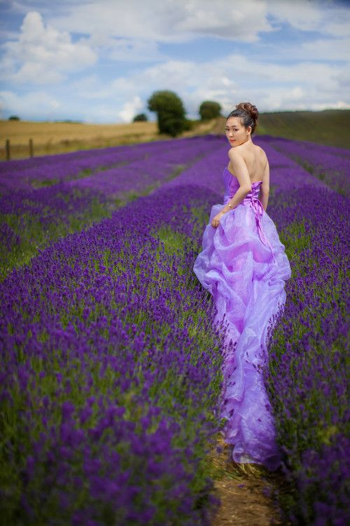 Wedding Picture in Lavander. #Valensole #Lavander #Provence