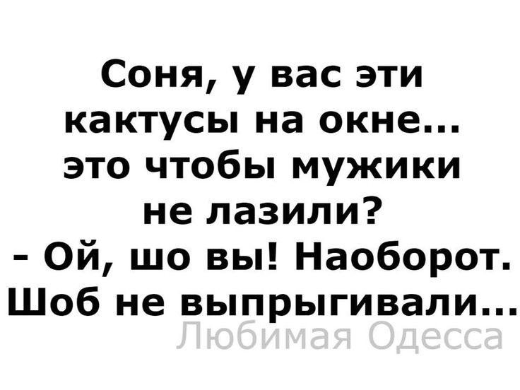 17202668_615600298636508_6701175567757890387_n.jpg (960×720)