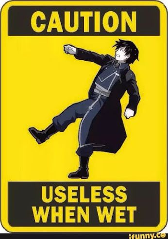 There's should be one for Natsu that says useless when riding anything