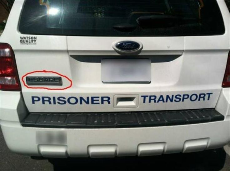 Irony At It's Finest 27 Pics