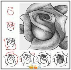 goede uitleg over het tekenen van een roos