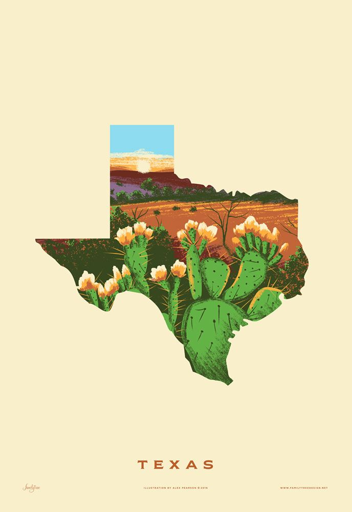 """• Illustration by Alex Pearson  • Part of the """"50 States of Beauty"""" Art Series  • 13"""" x 19"""" archival giclee print  The Texas Prickly Pear; official state plant. It may not be the most  welcoming or gentle flora, but it's beauty and hardy nature cannot be  denied. The fruit of the cacti or """"tuna"""" has provided food for natives of  the Southwest for thousands of years. It can be used to make syrups,  preserves, tea, alcohol and more. It also reminds me of Pokeys from Super  Mario Bros…"""