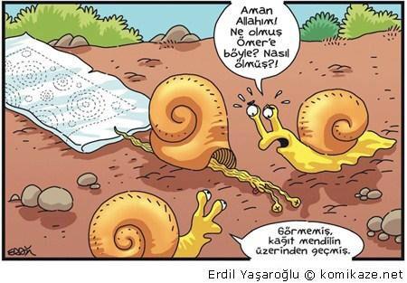 Image from http://resim.ekonorm.com/galeri/120702/erdil_yasaroglu_cizimleri_23.jpg.