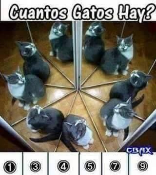 ¿Cuántos hay? Si conseguiste la respuesta comparte este Pin. Lo cierto es que sabemos que podría existir uno o varios espejos. Una clase de espejo interesante es el espejo convexo, te explicamos cuáles son aquí: http://grupoflx.com/espejos-concavos-convexos-de-seguridad-en-venezuela #mental #espejos