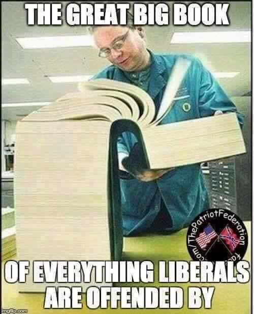 Liberal is another word for moron.