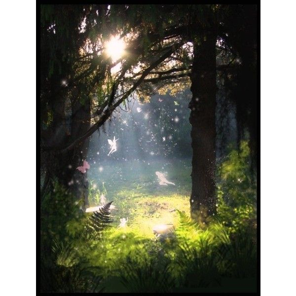 Enchanted forest mural liked on polyvore featuring for Fairy forest mural