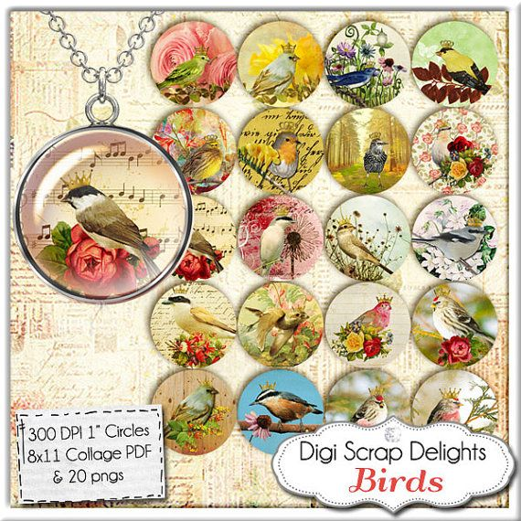 Birds Collage Sheet  One Inch Circles for by DigiScrapDelights