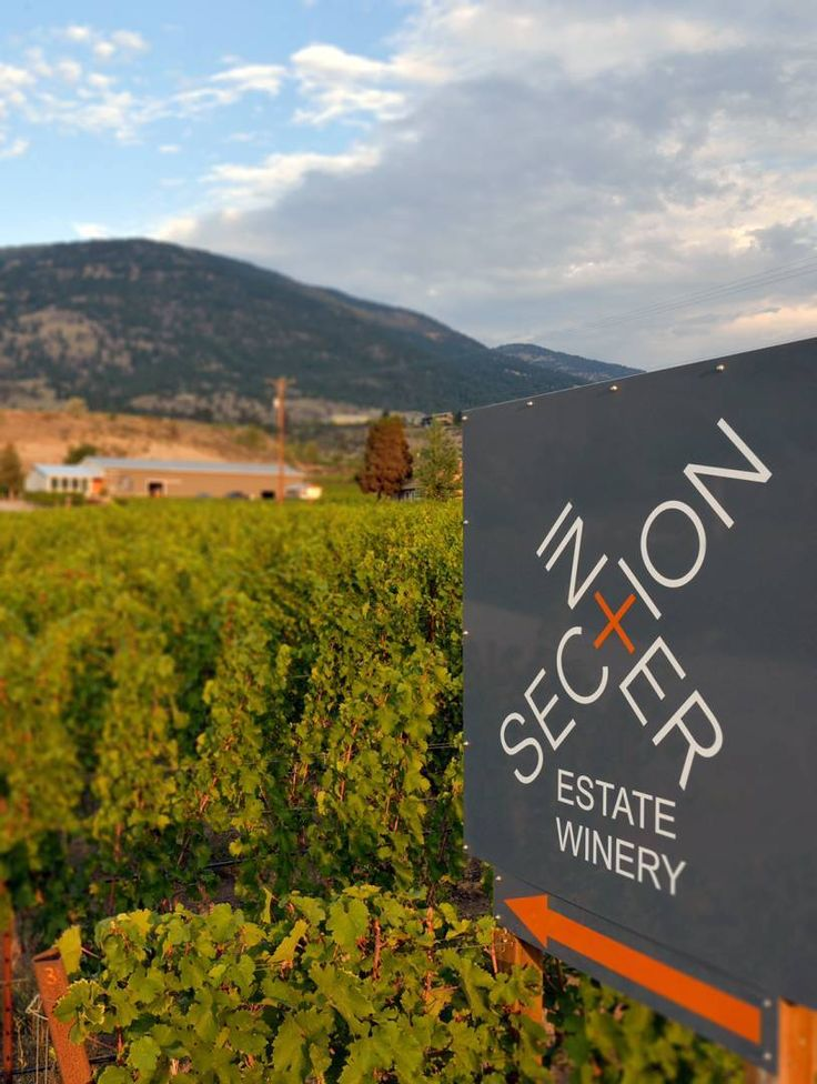 Intersection Estate Winery focuses on vines best suited to South Okanagan | Georgia Straight Vancouver's News & Entertainment Weekly