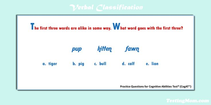 11 best school images on pinterest prep life prepping and assessment can your second grader solve this verbal classification practice question for the cogat fandeluxe Gallery