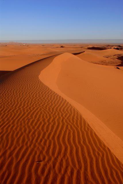 rayures du desert - SUD ZAGORA, Western Sahara