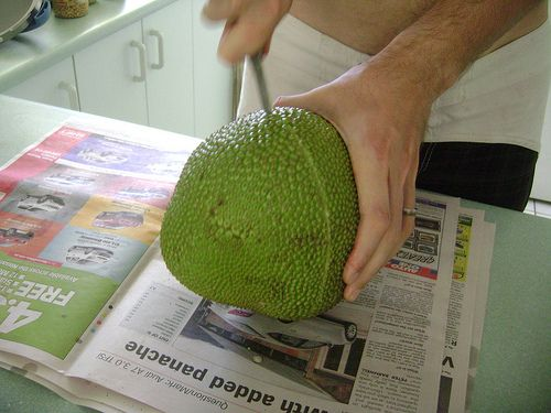How to handle fresh jackfruit (includes great step-by-step pictures and three recipes)