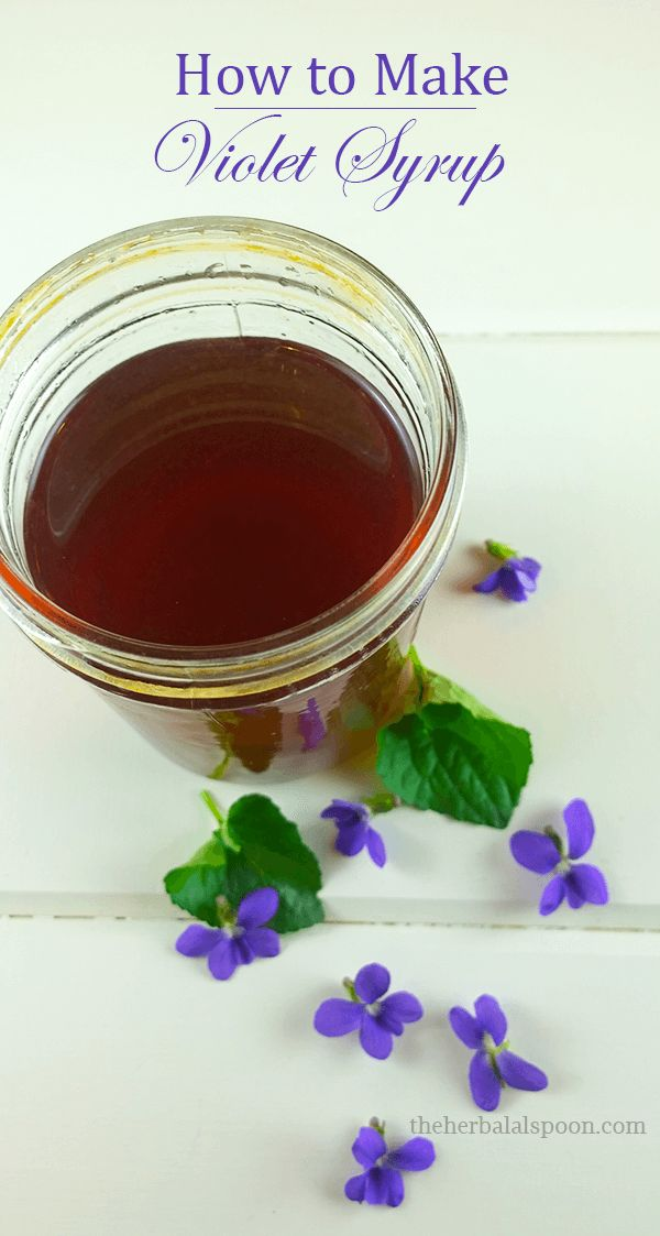 How to make violet syrup and the health benefits of violets - The Herbal Spoon