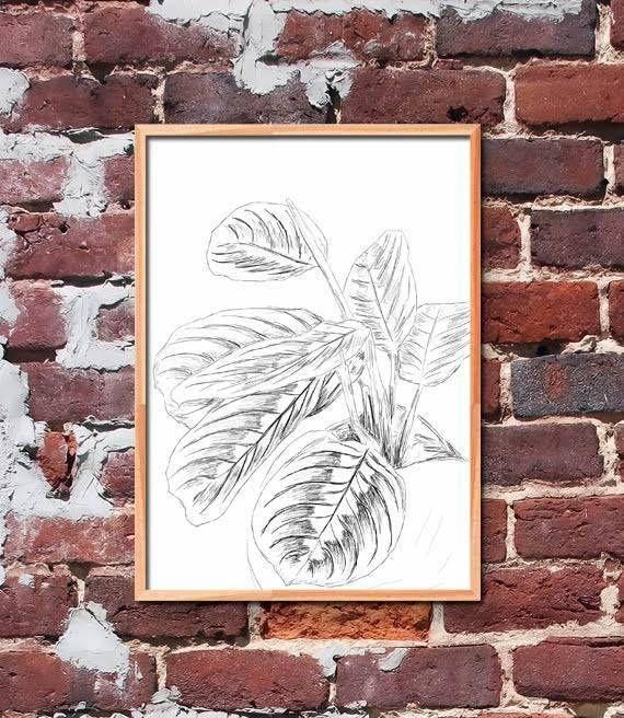 Prayer Plant Printable Art by gendots