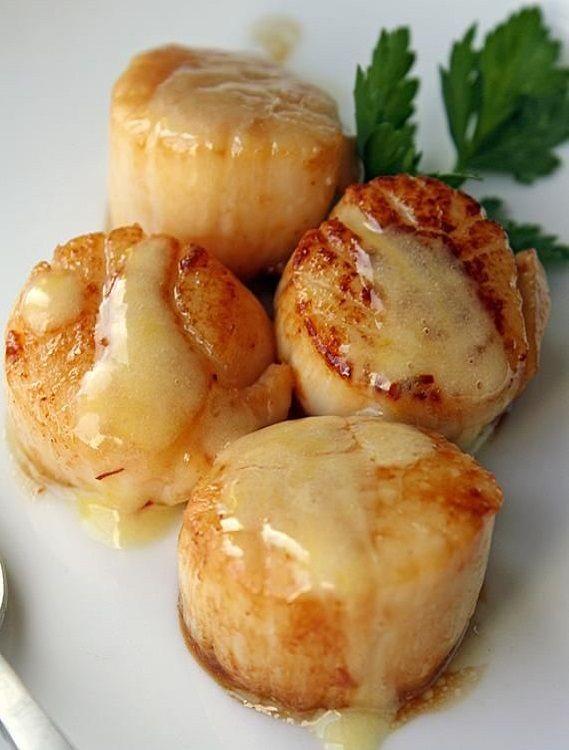 seared-scallops-with-saffron-sauce