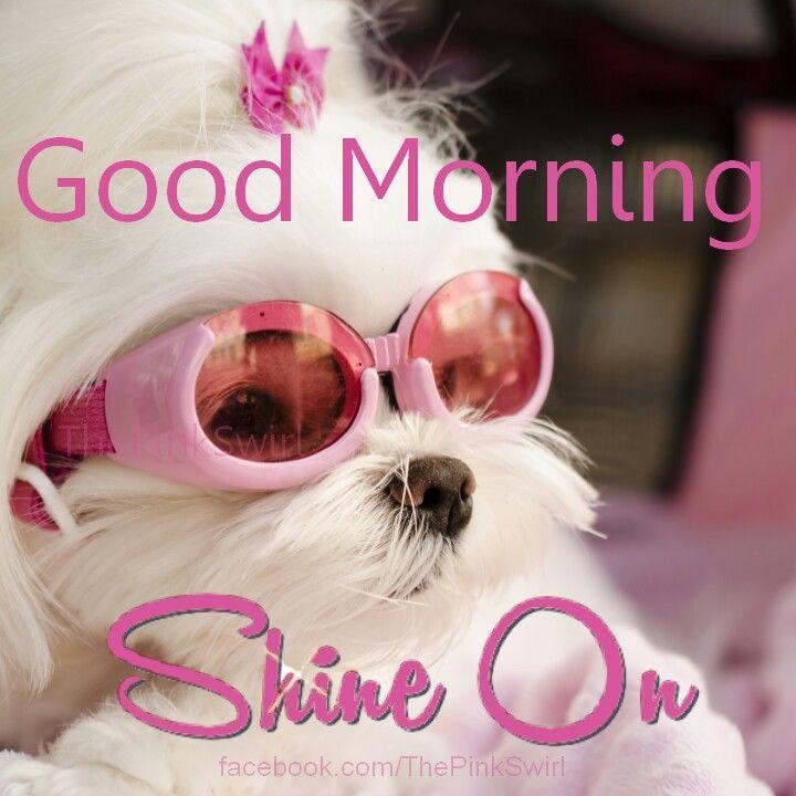 Good Morning! Shine On ☉
