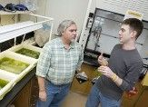 Algae researchers at rochester institute of technology.
