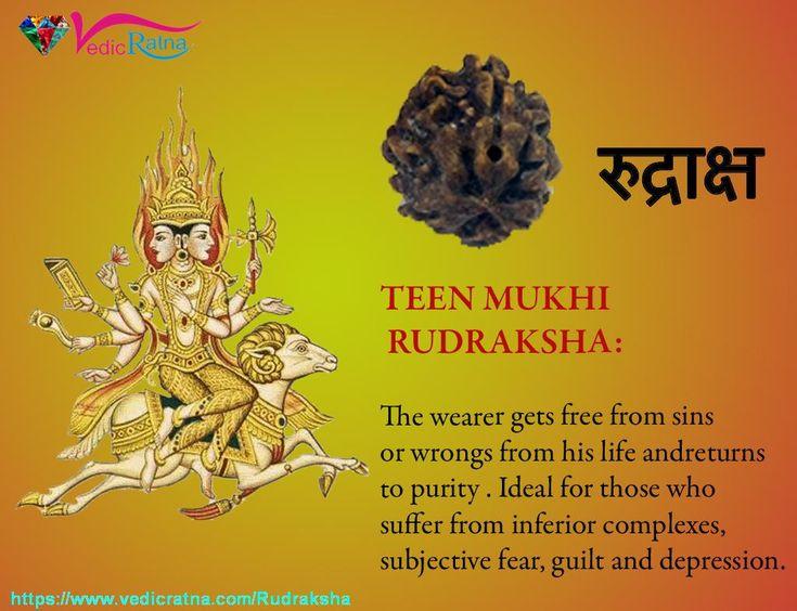 how to find original rudraksha
