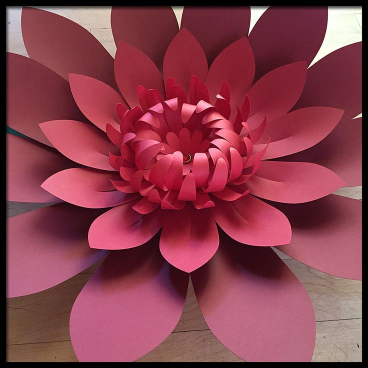 Giant Paper Flower - Wall, Photography Backdrop, Wedding, Reception Decoration, Party or Corporate Event DIY by FlowerGirlStacy on Etsy