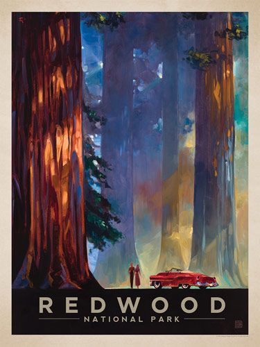 Redwood National Park: Among the Giants - Anderson Design Group has created an award-winning series of classic travel posters that celebrates the history and charm of America's greatest cities and national parks. Founder Joel Anderson directs a team of talented artists to keep the collection growing. This oil painting by Kai Carpenter celebrates the majestic beauty of Redwood National Park.