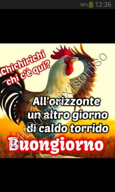 87 best buon giorno images on pinterest minion stuff for Buongiorno divertente sms