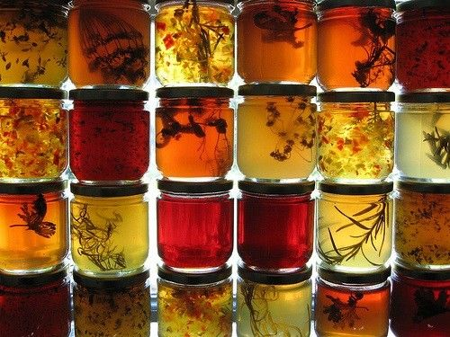 herb jellies to accompany cheese