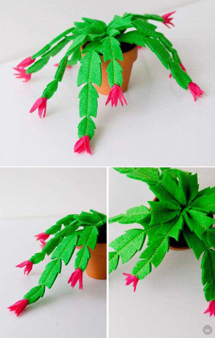 Christmas cactus | felt holiday crafts by Hallmark artists | thinkmakeshareblog.com