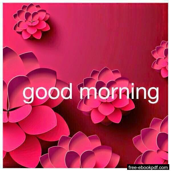 Funny Good Morning Texts Good Morning Wallpaper Good Morning Roses Morning Images