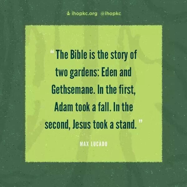 The Bible Is The Story Of Two Gardens: Eden And Gethsemane