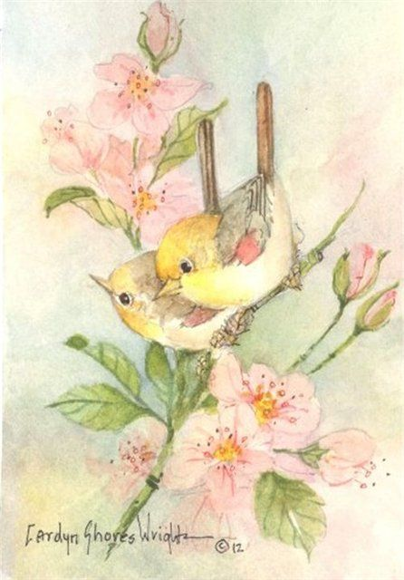 Verdin Spring 7x5 watercolor