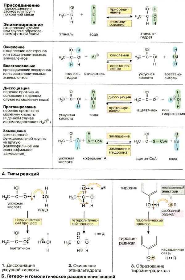 Химические реакции