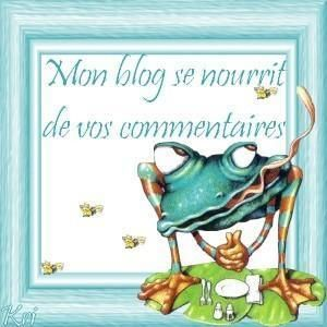 Another awesome blog for French resources