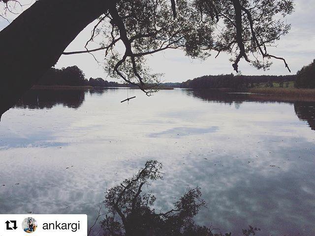 Instagram – iBiskupiec.pl