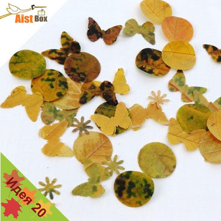 Мы предлагаем вам не терять времени, отправляться на прогулку и принести домой самые красивые и яркие листья, они вам понадобятся для создания необычного фигурного гербария.
