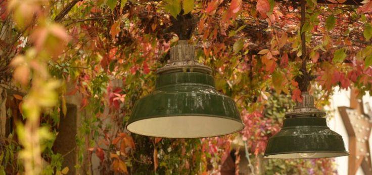 Autumn time- EMBASSYINTERIORS