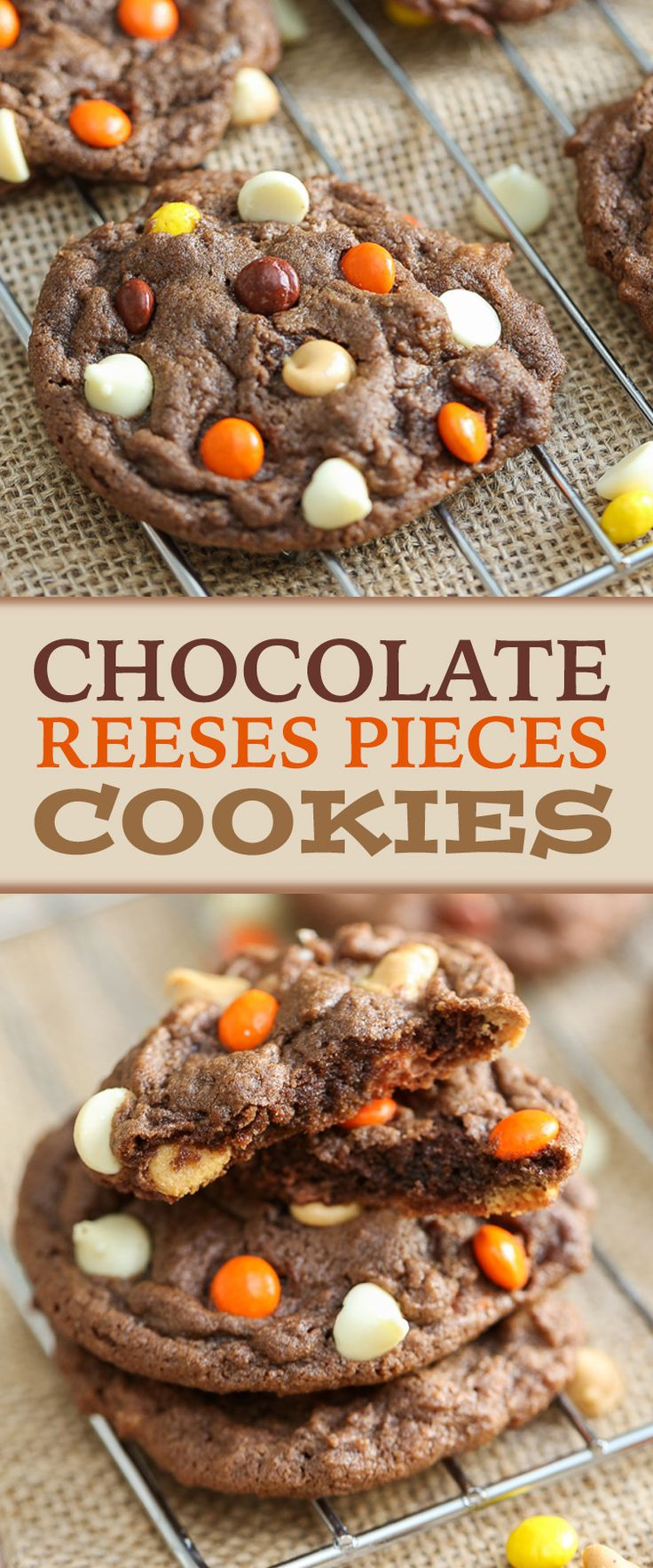 Chocolate Reese's Pieces Cookies are moist, fluffy - with milk chocolate, white chocolate and Reese's Pieces - it's the perfect cookie dessert.