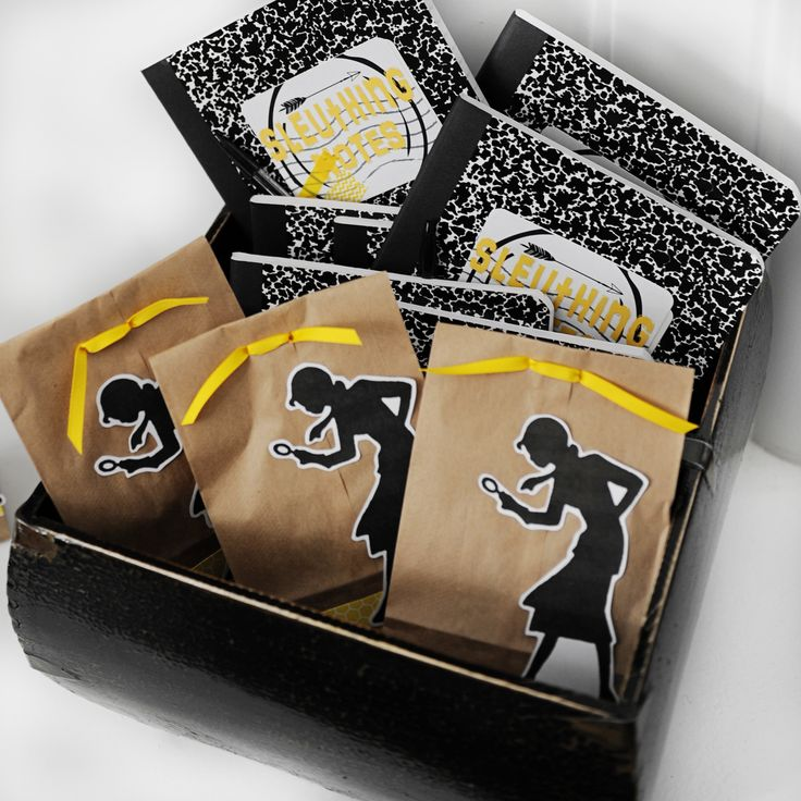 Nancy Drew Detective kits
