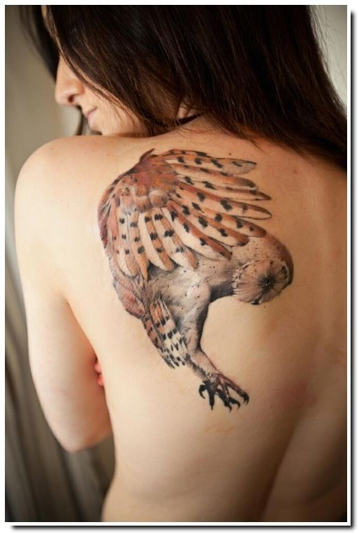 Joli dessin hibou tatoué sur l'épaule