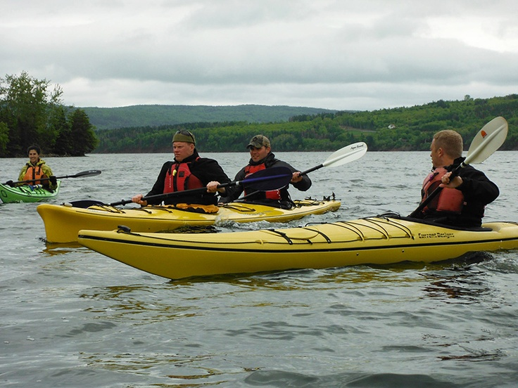 Corporate tour - Kayaking in the Bay, Cape Breton.