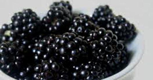Food Preserving: Blackberry Pie Filling