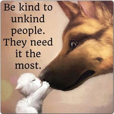 Be kind to unkind people life quotes quotes positive quotes quote life quote positive quote inspiring