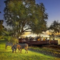 Zebra - Royal Livingstone Hotel. Quote and book   http://www.south-african-hotels.com/hotels/royal-livingstone-victoria-falls-zambia/