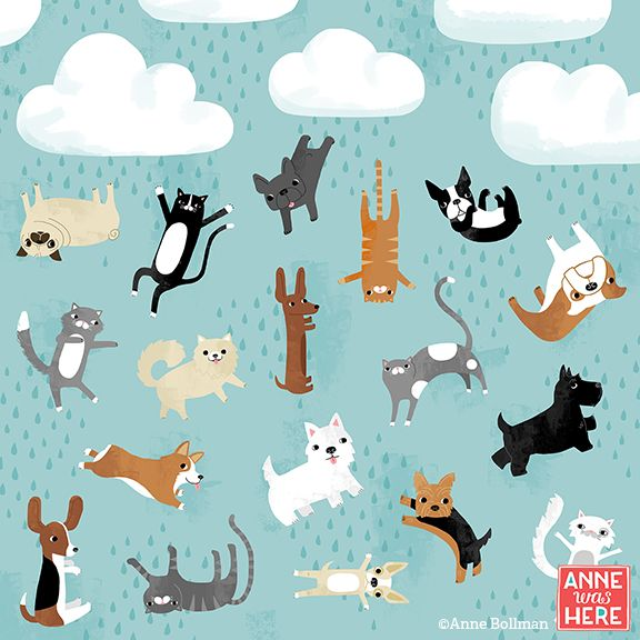 Raining Cats & Dogs by Anne Was Here www.annewashereandthere.com