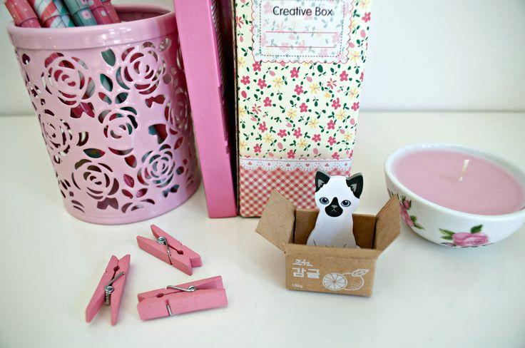 Mini in the box, post it, gatti