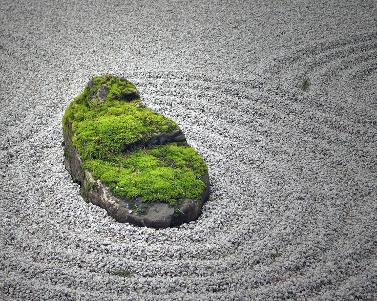 21 best Japanese Zen Gardens images on Pinterest Zen